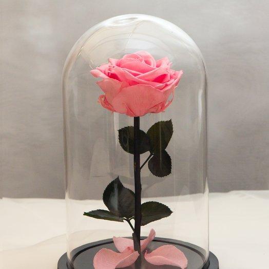 Роза в колбе RozaRose Медиум Розовая