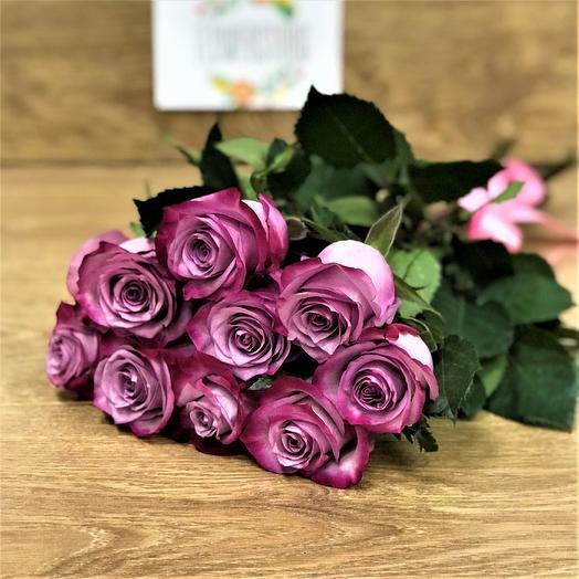 Эквадорская роза 9 шт ( 50 см) Deep Purple N336: букеты цветов на заказ Flowwow