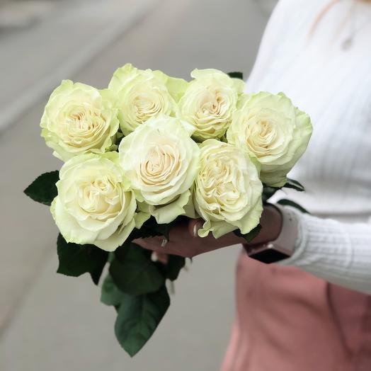 Роза Мондиаль премиум 7: букеты цветов на заказ Flowwow