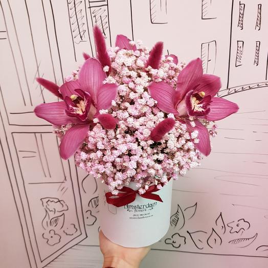 Королевские орхидеи