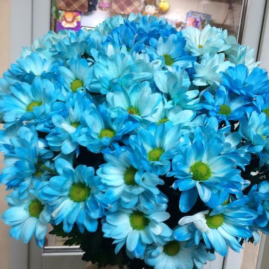 Букет хризантем  « Голубая Ромашка»
