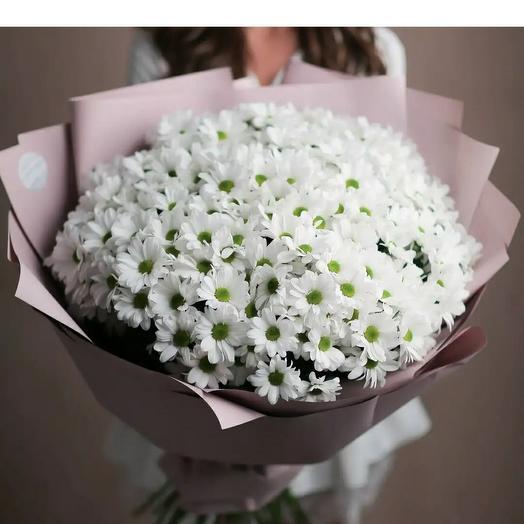 Mononoke of white chrysanthemums