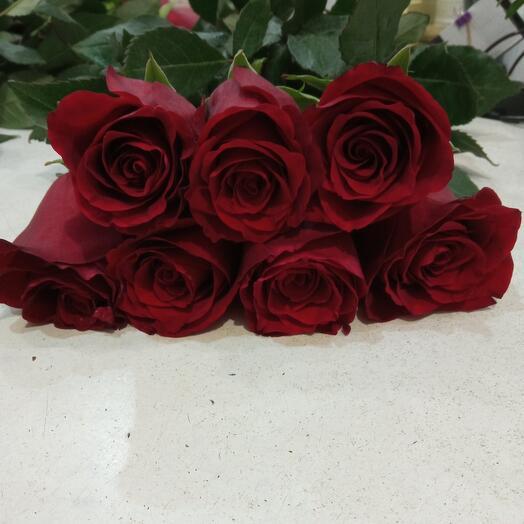 Роза Эквадора