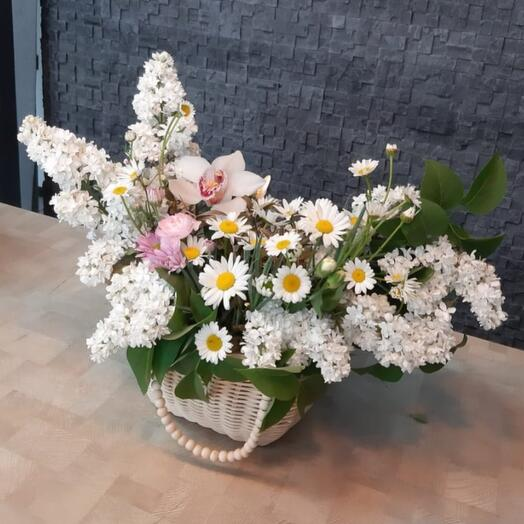 Basket with white mixture and daisies
