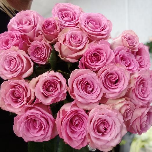 Роза sweet anique