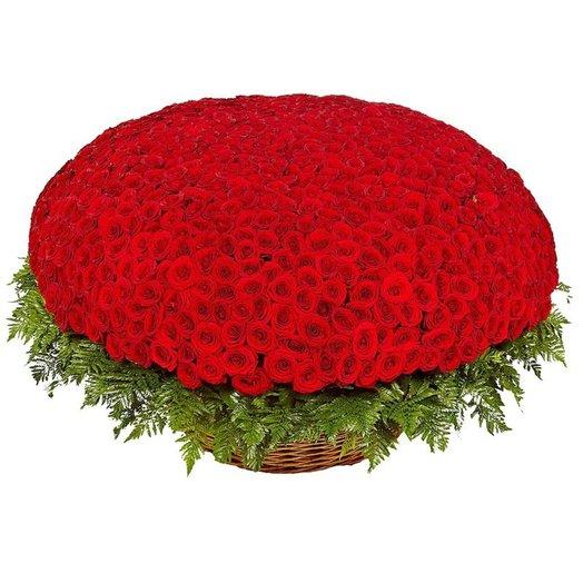 1001 роза Исполнитель желаний