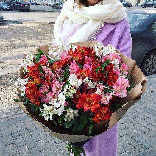 21 Альстромерия: букеты цветов на заказ Flowwow