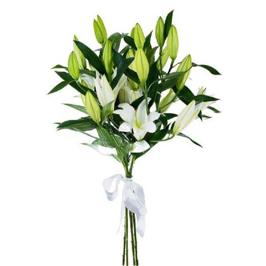 Лилия крупная белая 70см: букеты цветов на заказ Flowwow