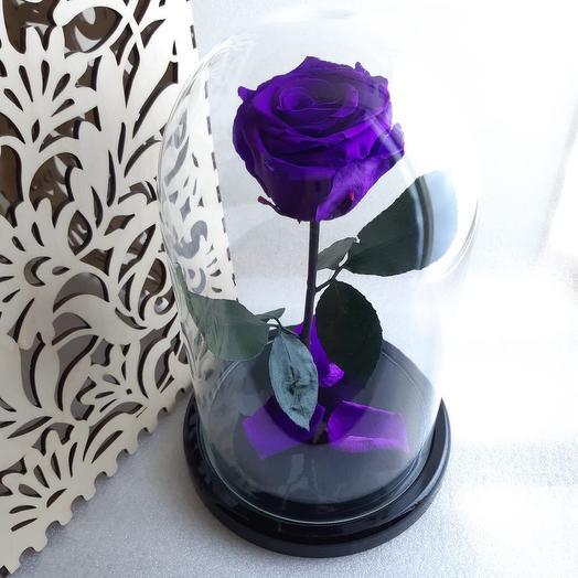 Вечная роза: букеты цветов на заказ Flowwow