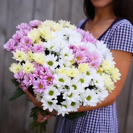 Букет из 17 разноцветных хризантем: букеты цветов на заказ Flowwow