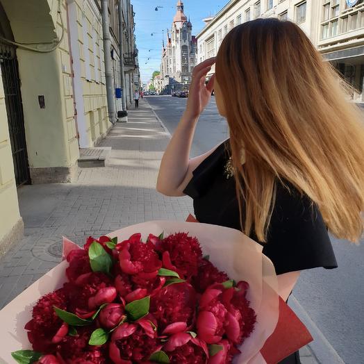 Букет пионов РЕД ШАРМ 25 штук Премиум: букеты цветов на заказ Flowwow