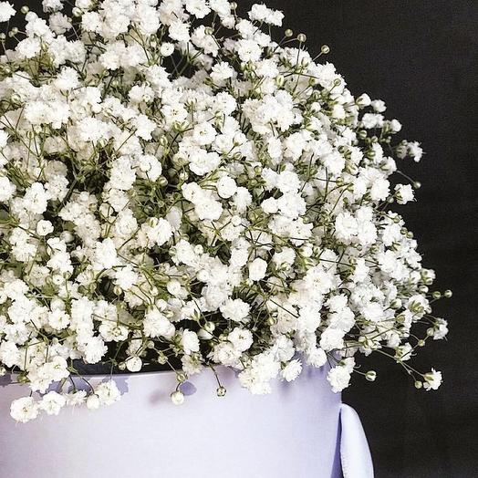Облако гипсофилы: букеты цветов на заказ Flowwow