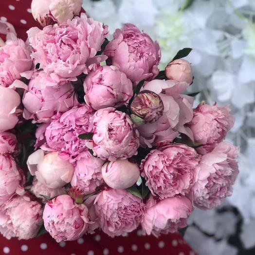 Розовый : букеты цветов на заказ Flowwow