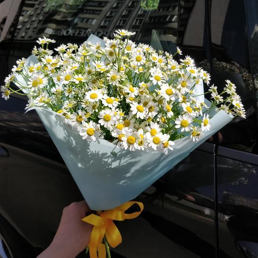 Ромашки девичьи мини: букеты цветов на заказ Flowwow