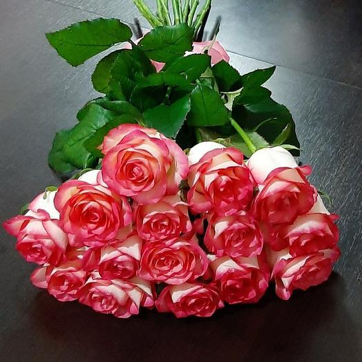 15 роз Роза Джумилии 60 см