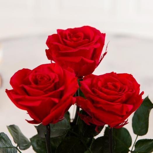 Букет из 3 роз в пленке
