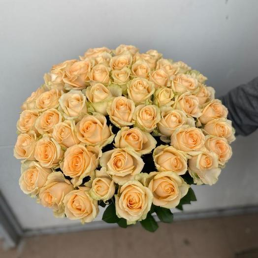 АКЦИЯ 51 кремовая Роза