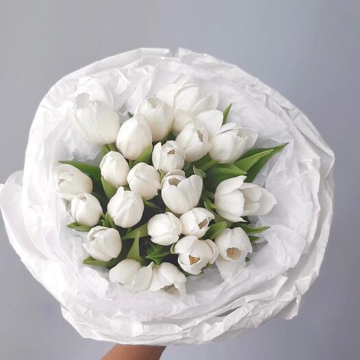 Белые тюльпаны 15