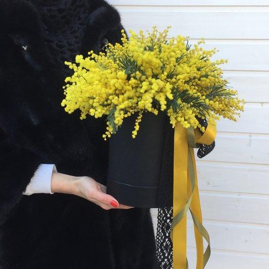 Мимоза   Премиум: букеты цветов на заказ Flowwow