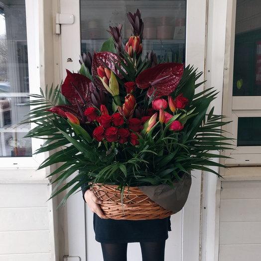 Tropicale: букеты цветов на заказ Flowwow