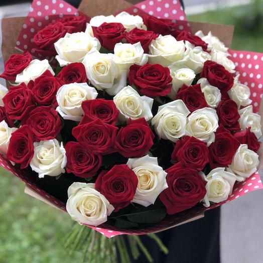 51 бело-красная роза