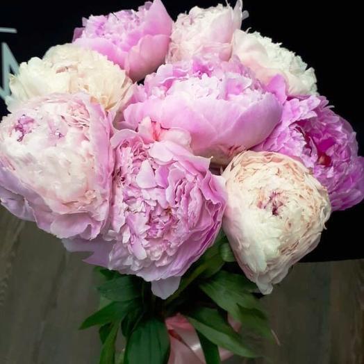 Букет из 9 пионов: букеты цветов на заказ Flowwow