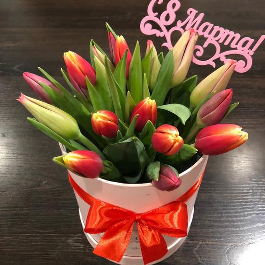 Tulips in a box 007