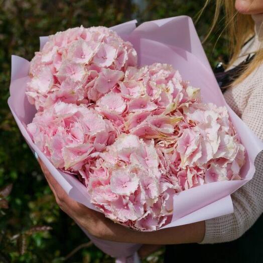 Розовая гортензия размер букета XL