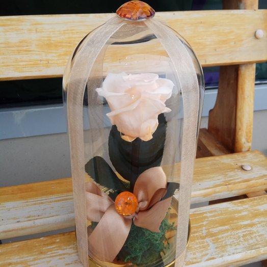 Роза стабилизированная: букеты цветов на заказ Flowwow