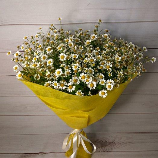 Летние ромашки: букеты цветов на заказ Flowwow