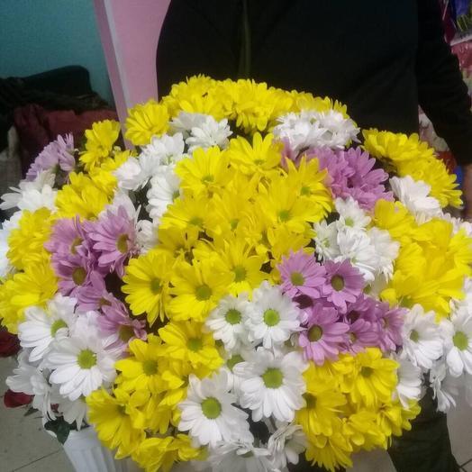 25 хризантем микс: букеты цветов на заказ Flowwow