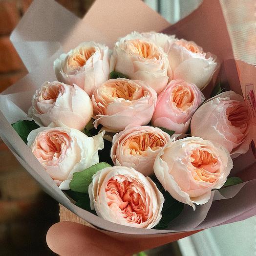 Пионовидная роза джульетта