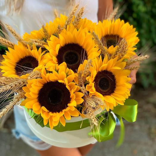 Подсолнухи в коробке: букеты цветов на заказ Flowwow