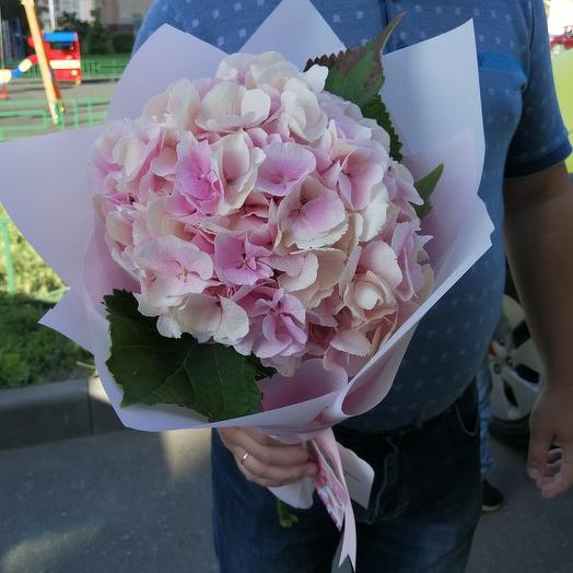 Розовое облако гортензии: букеты цветов на заказ Flowwow