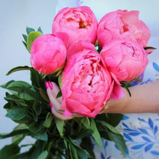 5 Коралловых Пионов: букеты цветов на заказ Flowwow