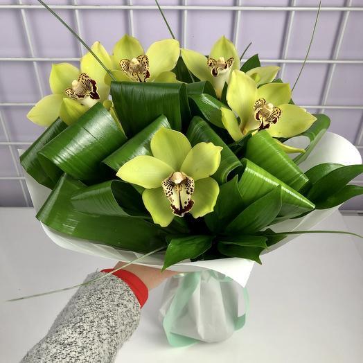 Орхидея зелёная