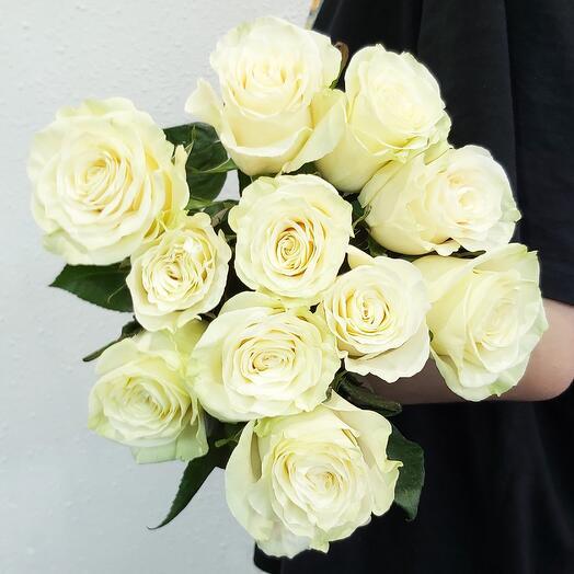 Роза (одногол.) Mondial 60 см - 11