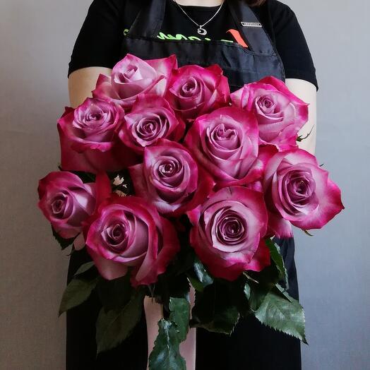 Rosa Ecuador