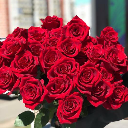 Роза красная 25 штук