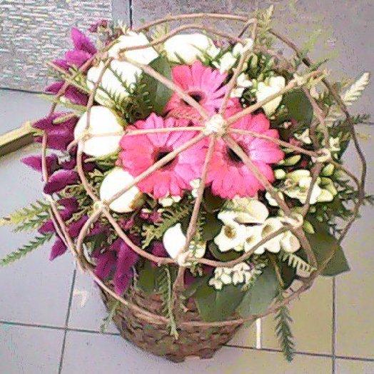 Авторская сфера . Пион, гербера и фрезия: букеты цветов на заказ Flowwow