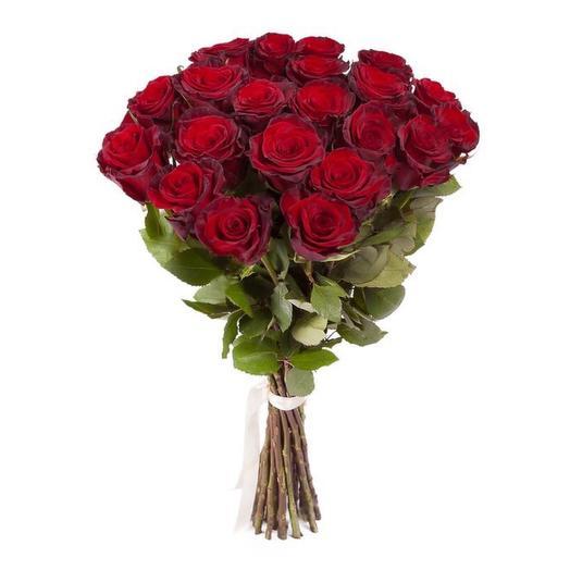 Букет из 25 элитных эквадорских роз сорта Explorer