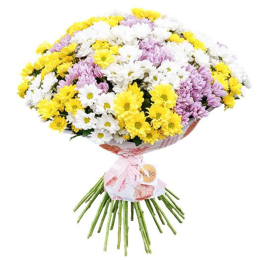 25 разноцветных кустовых хризантем