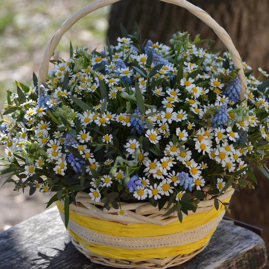 Приветливое солнышко: букеты цветов на заказ Flowwow