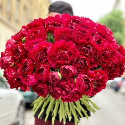 51 бордовый пион: букеты цветов на заказ Flowwow