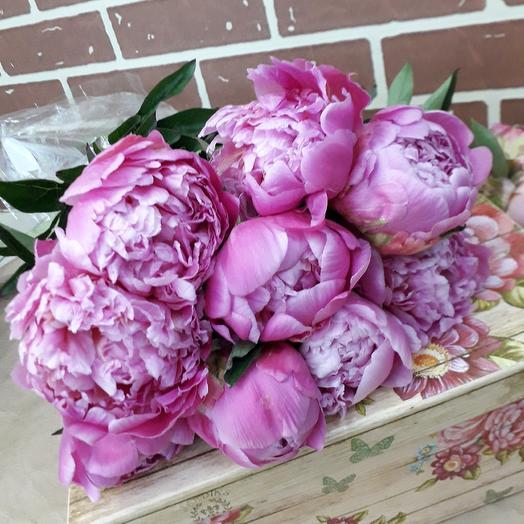 9 крупных пионов: букеты цветов на заказ Flowwow