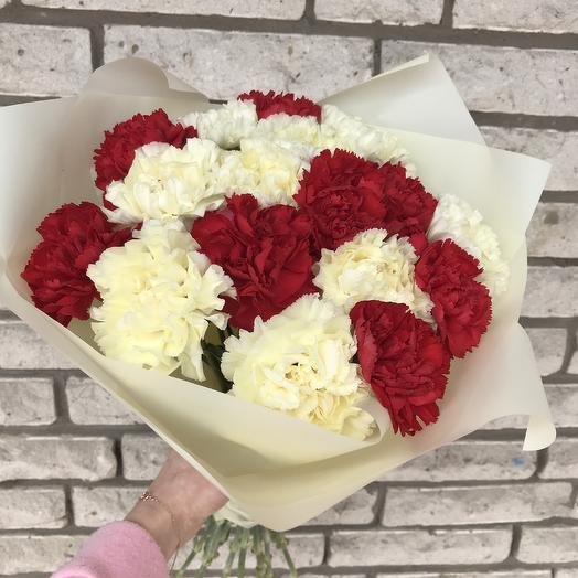 Гвоздики микс: букеты цветов на заказ Flowwow
