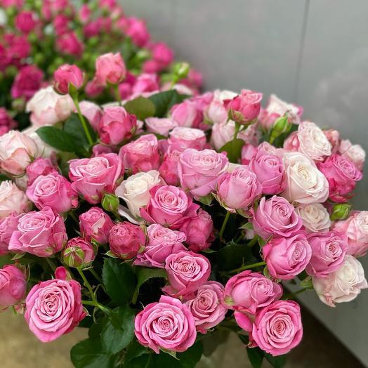 Леди Бомбастик Lady Bombastic Rose
