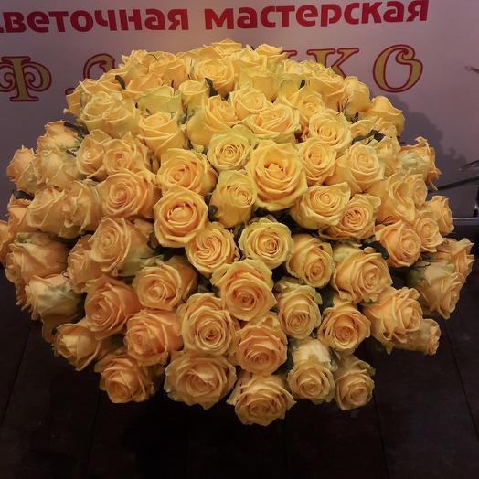 Роза101