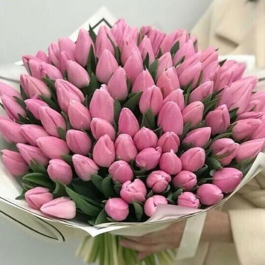 Моно из 100 Тюльпанов