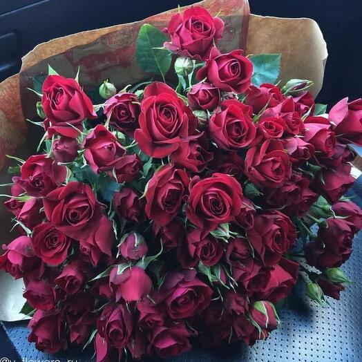 25 кустовых бордовых роз